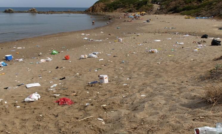 Ambiente. Rimozione della posidonia da spiagge e porticcioli