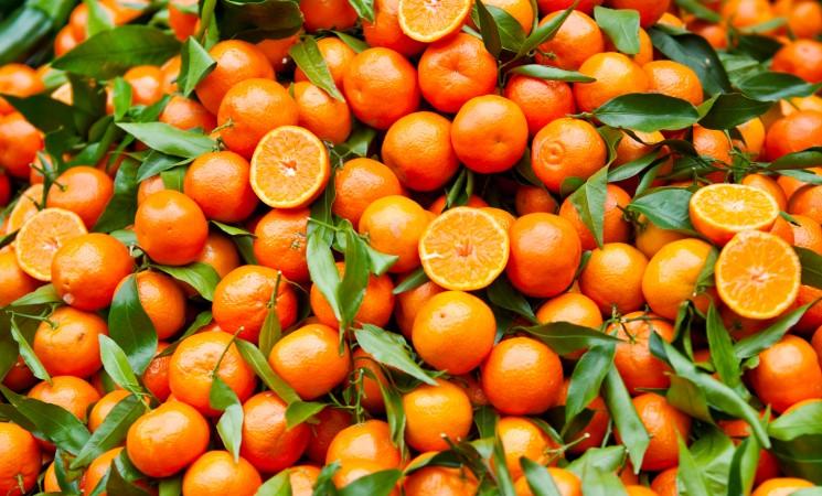 Agrumi, prodotti made in Sicily in Polonia grazie al Distretto Agrumi di Sicilia